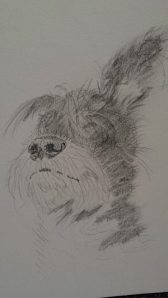 Finn sketch