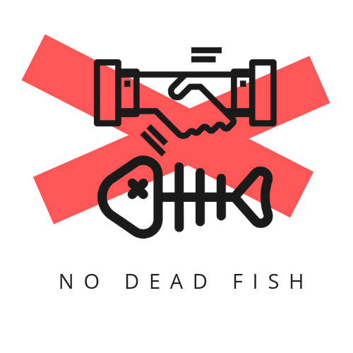 No Dead Fish: Teaching Students to Write Effective